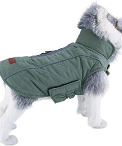 ThinkPet Warm Reversible Dog Coat – Thick Padded Comfortable Winter Dog Jacket, Reflective Safey Dog Vest M Green