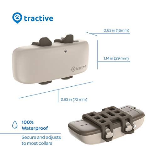Tractive LTE GPS Dog Tracker – Location & Activity Tracker for Dogs with Unlimited Range (Newest Model), Beige (TRNJA4)