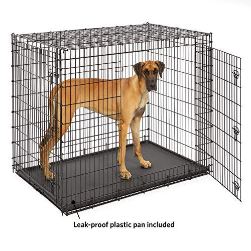 Midwest SL54DD 'Ginormus' Double Door Dog Crate for XXL for the Largest Dogs Breeds, Great Dane, Mastiff, St. Bernard