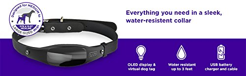 BLACK+DECKER Smart Dog Collar, GPS Tracker, 2-Way Audio, Water Resistant, Black Med/Large (Fits 15″-21″ neck)