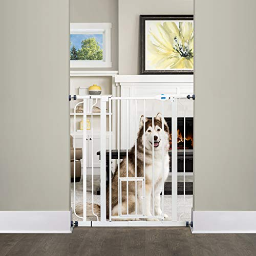 Carlson Extra Tall Walk Through Pet Gate with Small Pet Door, Includes 4-Inch Extension Kit, 4 Pack Pressure Mount Kit and 4 Pack Wall Mount Kit