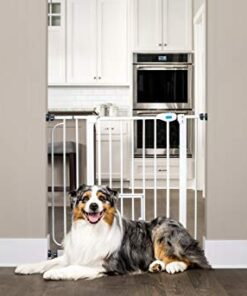 Carlson Extra Wide Walk Through Pet Gate with Small Pet Door, Includes 4-Inch Extension Kit, Pressure Mount Kit and Wall Mount Kit