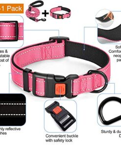 "tobeDRI Reflective Nylon Dog Collar – Soft Neoprene Padded, Reflective and Adjustable – Dog Collars for Small Medium Large Dogs (Collar+Leash M-Neck 15""-18"", Pink)"