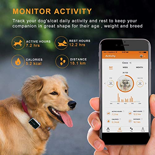 Pawfit 2 GPS Dog Tracker for Pet Dog Collar,Three Positioning,IP68 Waterproof, Removal Alert, Safety Zone Alert,Included Embedded SIM Card,Mini GPS Tracker for Dogs and Large Cats