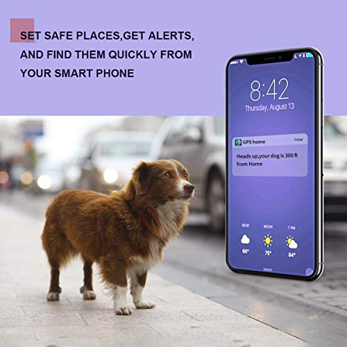 LMHOME GPS Pet Tracker, Real Time Dogs Cats Locator Finder – Waterproof|Alarm|, Security Fence|Remote Monitoring – Fits for All Android iOS Devices