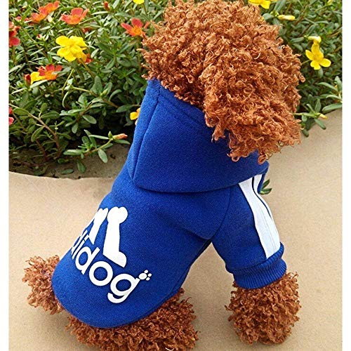 Moolecole Pet Sports Apparel Cat & Dog Cold Weather Coats Dog Hoodies Pet Sweaters (M, Sapphire Blue)