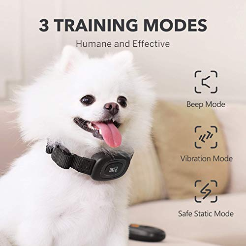 DOG CARE Dog Training Collar with Remote – Rechargeable Dog Shock Collar with Beep, Vibration and Adjustable Shock Levels, Portable Remote Dog Collar for Large Medium Small Dogs, Safe and Humane