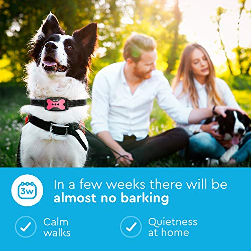 DogRook Rechargeable Bark Collar for Dogs for Humane No Shock Training of All Dog Breeds