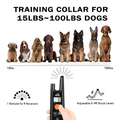 Dog Training Collar – Rechargeable Dog Shock Collar with Beep, Vibration and Shock Training Modes, Rainproof, Long Remote Range, Adjustable Shock Levels Shock Collars for Dogs with Remote